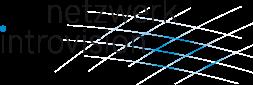 Logo Netzwerk Introvision
